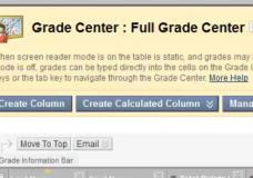 Blackboard Grade Center – How to print out an individual student's grades