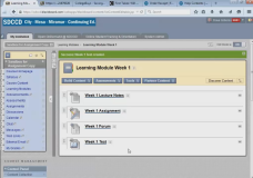 Blackboard Learning Modules and Modular Course Design