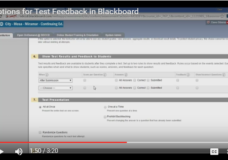 Setting Test Feedback Options in Blackboard Learn 9.1
