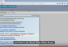 Putting a Link to the World Wide Whiteboard into your Blackboard Course