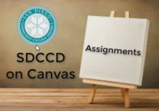 Canvas Assignments
