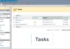 tasks in Bb